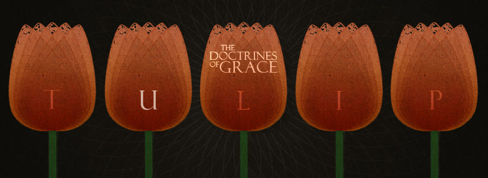 Doctrines-Of-Grace-U