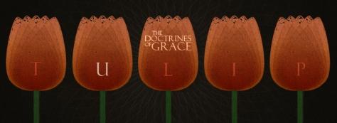Doctrines-Of-Grace-U